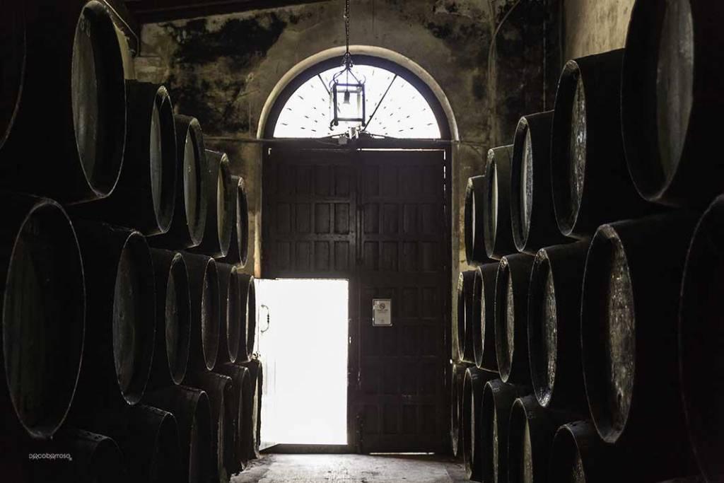 """""""BODEGAS BARÓN... tradición y vanguardia van de la mano para deleitarnos con la calidad de sus vinos"""""""