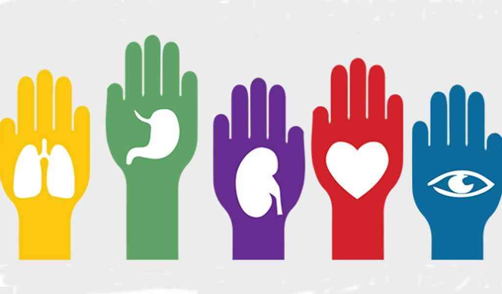Conferencia sobre la donación de órganos