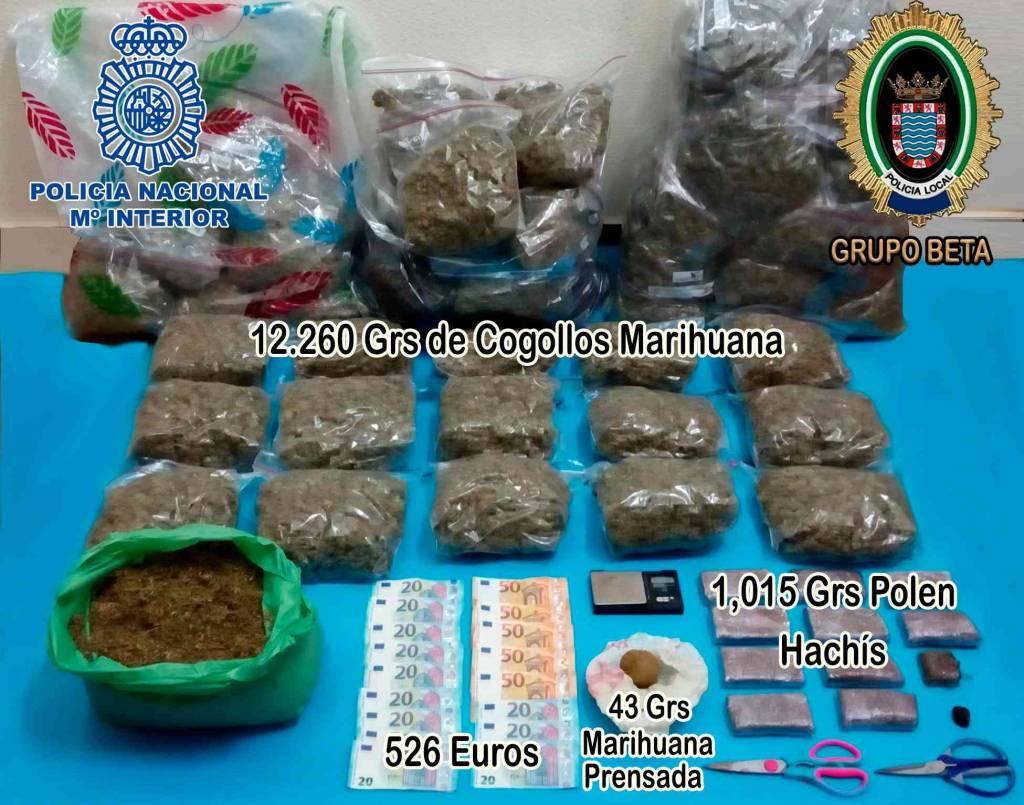 Desmantelada en Jerez una plantación con más de 12 kilos de cogollos de marihuana