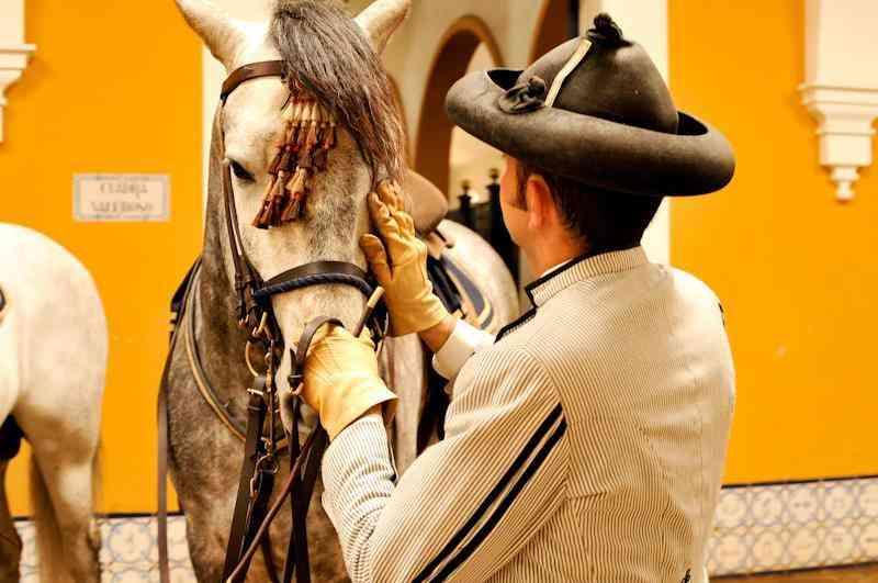 La Real Escuela de Arte Ecuestre llevará su espectáculo a Lisboa