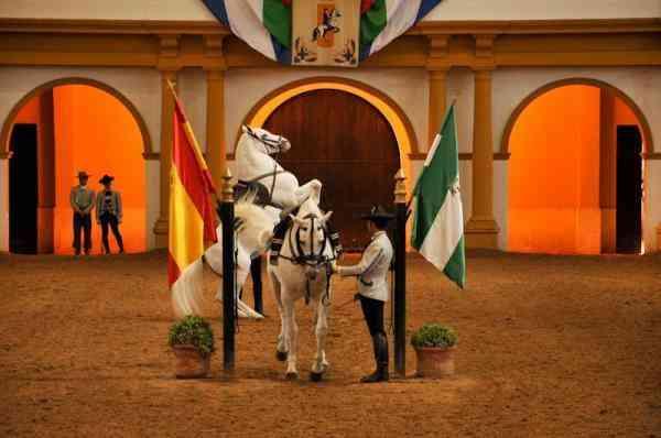 La Real Escuela ofrece este sábado su espectáculo por la festividad del Pilar