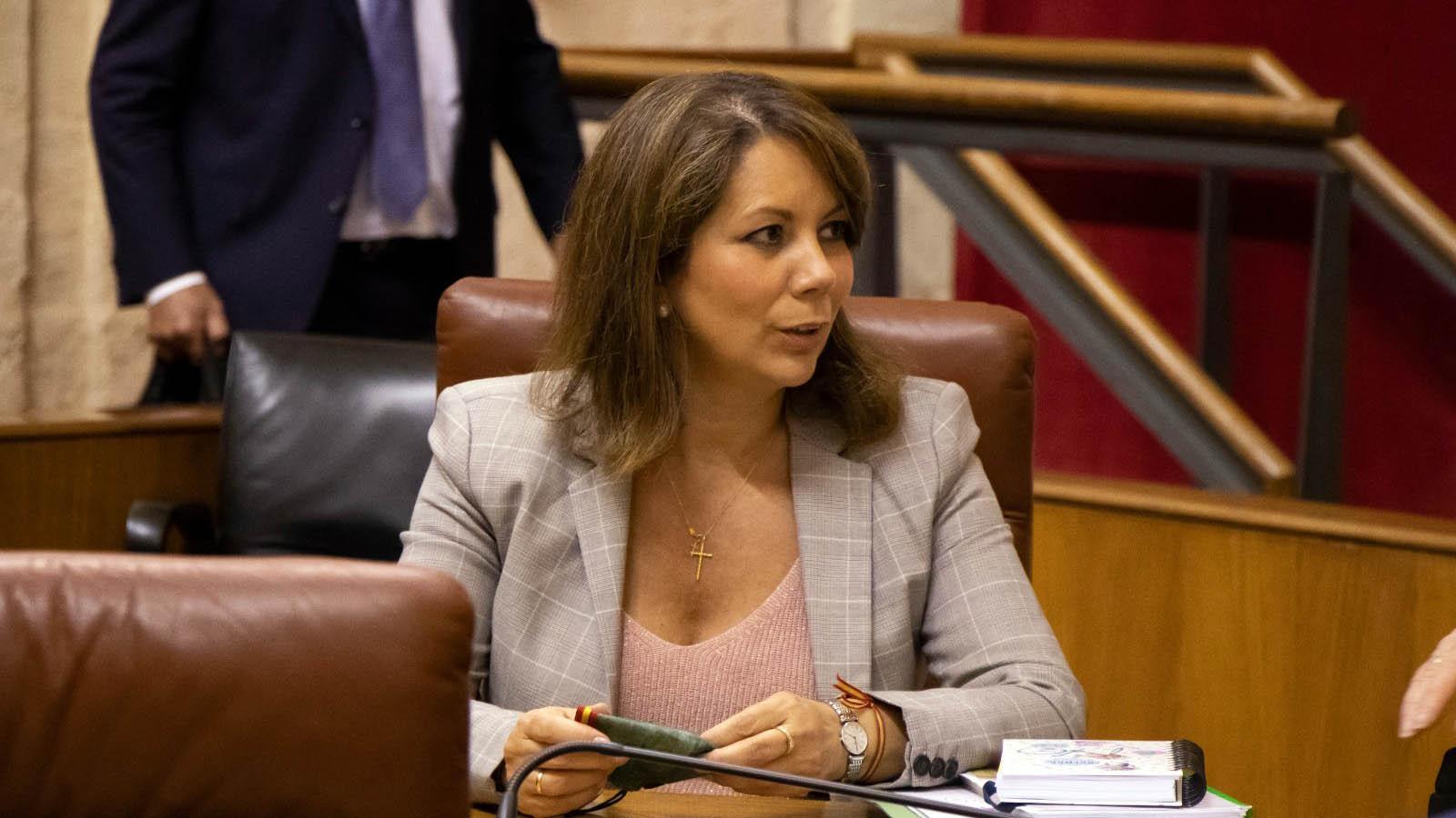 Vox denuncia que la Diputación de Cádiz ofrece un monólogo de odio y adoctrinamiento a menores en horario lectivo