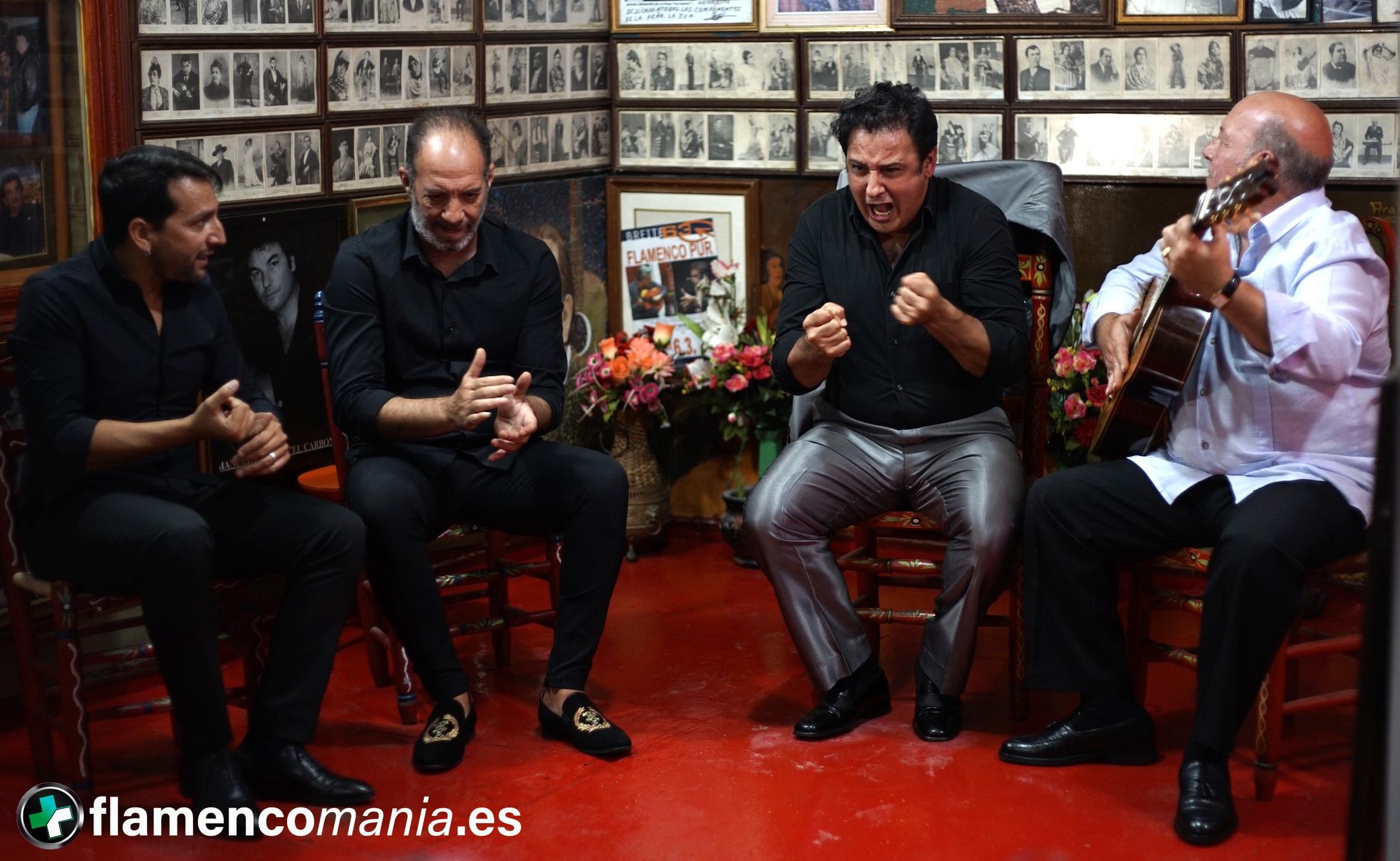Así se va a celebrar el Día del Flamenco de la Provincia de Cádiz
